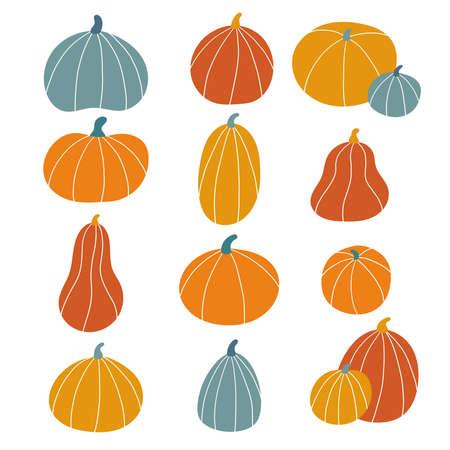 Set of hand drawn pumpkins. Doodle vegetables for Halloween and Thanksgiving celebration. Autumn vector illustration.