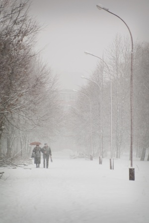 Senior couple walking in the park in the winter photo