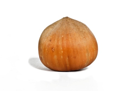shuck: Hazelnut on the white background Stock Photo