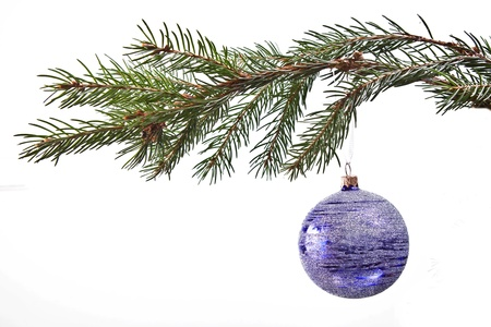 Blue christmas decoration on the fir tree photo