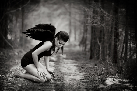 mystical forest: fallen angel