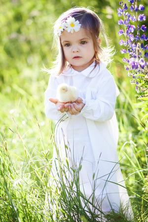 cute girl holds  little chicken