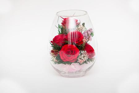 진공 상태의 빨간 장미