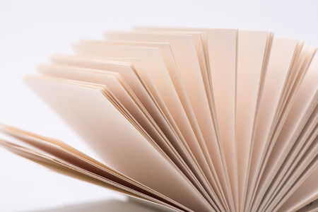 lexicon: Open book pages on white background, close-up.
