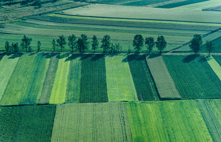 Birds Eye View of the Agricultural Fields and Parcel. Stock Photo
