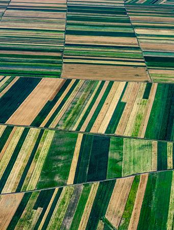 agricultura: Birds Eye vista de los campos agrícolas y parcelas.