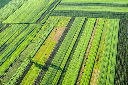 plowed field: Birds Eye View of the Agricultural Fields and Parcel. Stock Photo