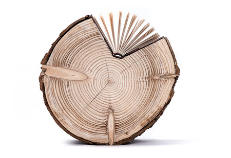 conceptual image: Conceptual image about the cross section of the tree trunk and book on white background. Stock Photo