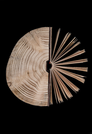 Conceptual image about the cross section of the tree trunk and book on black background.