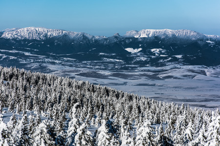 iciness: Snowy landscape in mountains east Carpathians, Harghita region, Romania. Stock Photo