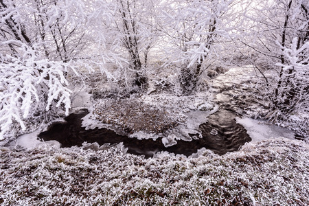 flux: Rime Trees and creek in winter. Creek harm flows in the creek bed, covered of snow in winter and the ice coast. Stock Photo