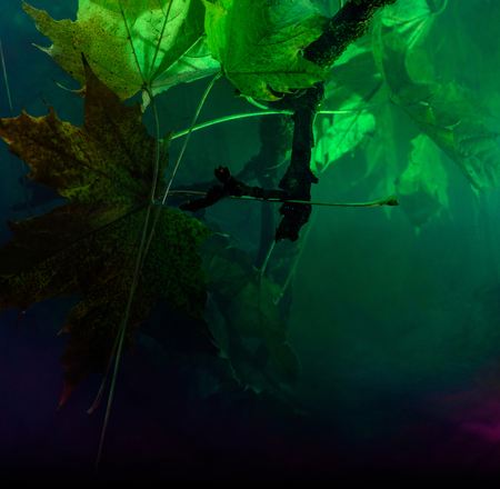 Toxic Water with Color Chemistry Material. Underwater Pollution.