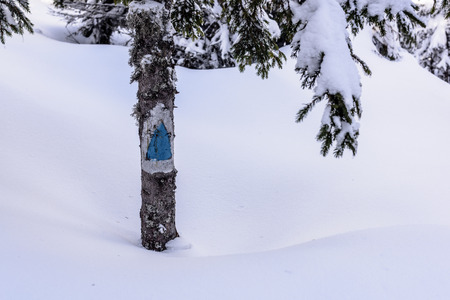 Hiking Trail Sign. Blue tourist sign in mountain path in big snow.