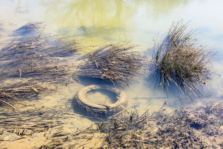 Pollution. Problems of ecology in the river, abandoned tire in a river. Stock fotó