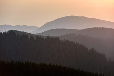 Forest Mountain Scene at Sunrise. Sunrise in the Mountains. Stock fotó - 112601597