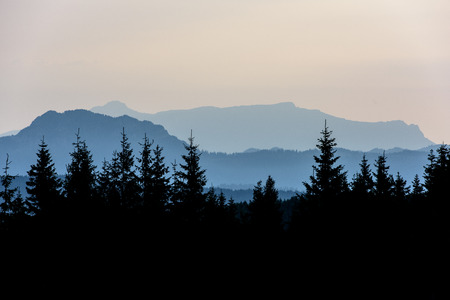 Forest Mountain Scene at Sunrise. Sunrise in the Mountains. Stock fotó - 112601598