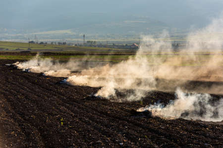 Farmers burn the dry grass and straw stubble on a field in autum, another cause of global warming. Air pollution. Stock Photo