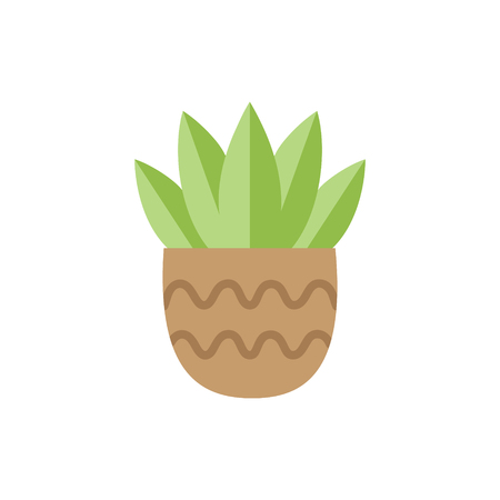 Cute cactus in brown plant can vector illustration. Isolated agave juicy, web or print icon.