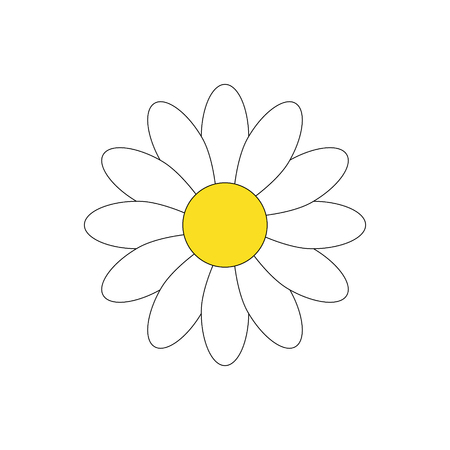 Simple white daisy flower vector illustration, isolated on white background.