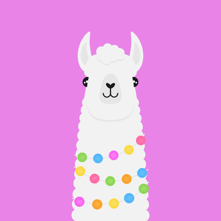 Llama, white fluffy alpaca vector illustration. Llama head with colorful pom poms around neck. Banque d'images - 121528724