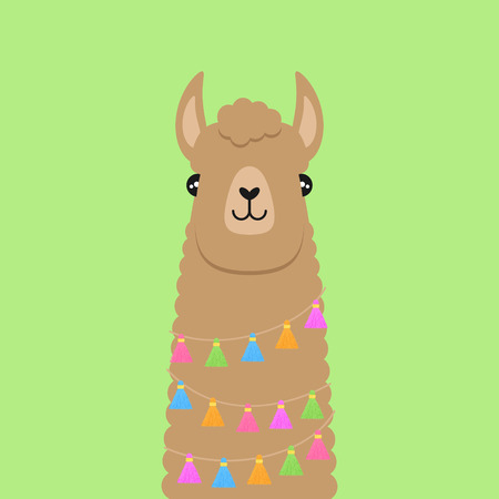 Llama, brown fluffy alpaca vector illustration, isolated on green background. Llama head with colorful tassels on string around neck. Ilustração