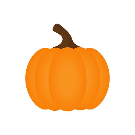 Orange pumpkin vector illustration. Autumn halloween pumpkin, isolated on white background. Illustration