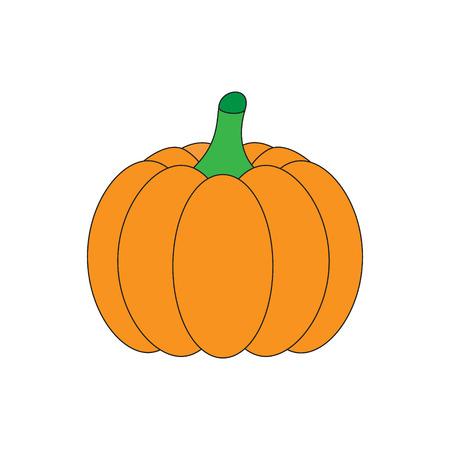 Orange halloween pumpkin, vector illustration. Pumpkin vegetable isolated on white background. Graphic print or icon.