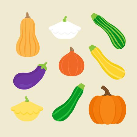 Seasonal squash, gourd vector illustration set; pumpkin, butternut squash, panty squash, green, yellow and striped zucchini, hokkaido pumpkin and eggplant. Isolated on beige background.