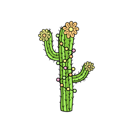 Hand drawn cactus. Cute outlined vector illustration of cactus plant with flowers and decorations. Isolated.