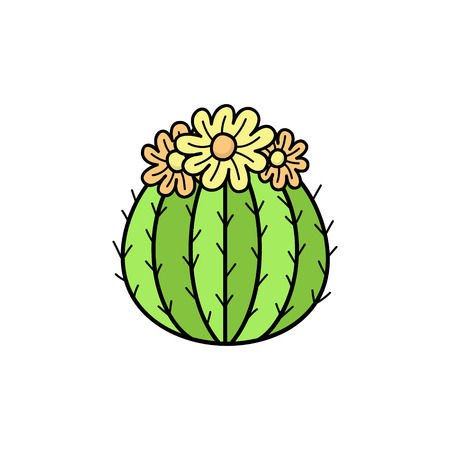 Hand drawn cactus. Cute outlined vector illustration of cactus plant with flowers. Isolated.