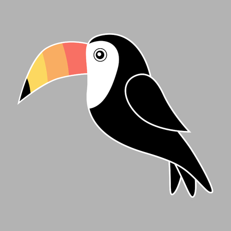 Toucan bird vector illustration, toucan graphic isolated on gray background.