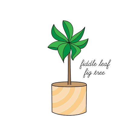 Vector Illustration Keywords: Hand Drawn Cute Outlined Indoor Plant in Pot. Isolated. Vettoriali