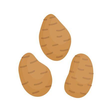 Potatoes vector illustration icons. Kitchen potato vegetable. Isolated.
