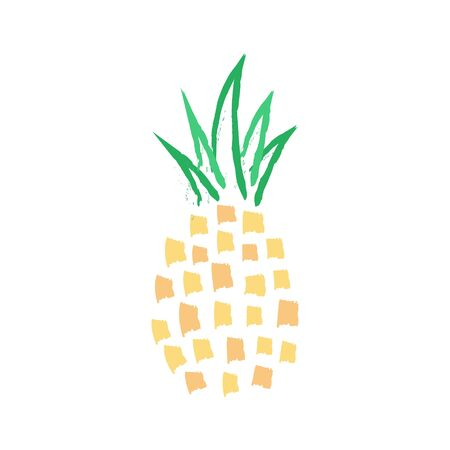 Pineapple vector illustration painting. Hand drawn pineapple tropical fruit design. Isolated.