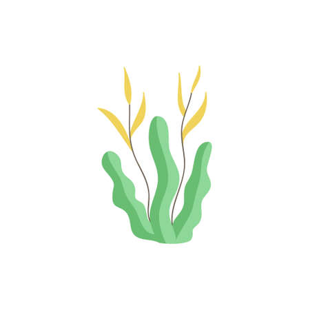 Seaweed cute vector illustration. Hand drawn outlined ocean, marine, sea green seaweed. Isolated.  イラスト・ベクター素材