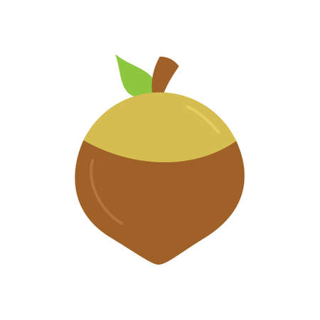 Acorn round vector icon. Autumn, fall brown nut circle illustration. Isolated.