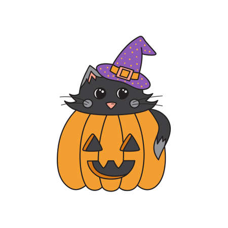 Cute cat in pumpkin vector illustration. Halloween graphic outlined drawing of black cat with witch hat inside carved pumpkin. Isolated.