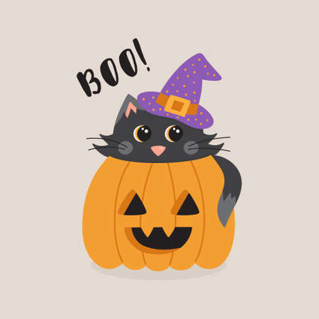 Boo! cute cat in pumpkin vector illustration greeting card. Graphic drawing of black cat with witch hat inside carved pumpkin, with text. Isolated.