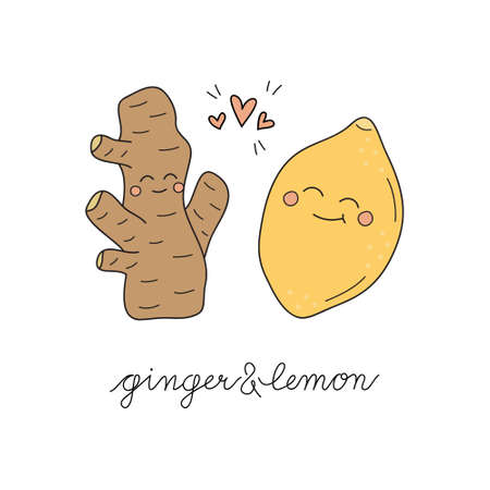 Ginger and lemon vector hand drawn illustration with writing. Cute ginger root with lemon citrus fruit, lovely combination. Winter, cold, immunity tea ingredients. Isolated.