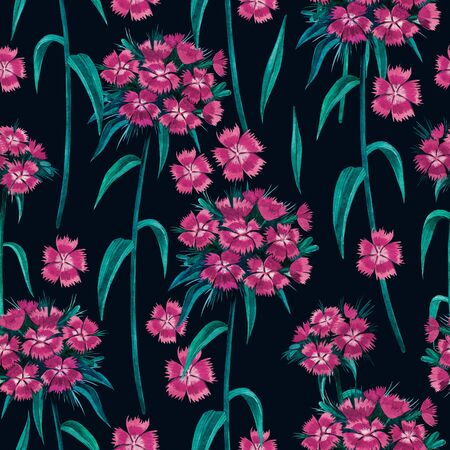 seamless pattern with pink Turkish carnation on a dark green background. Фото со стока