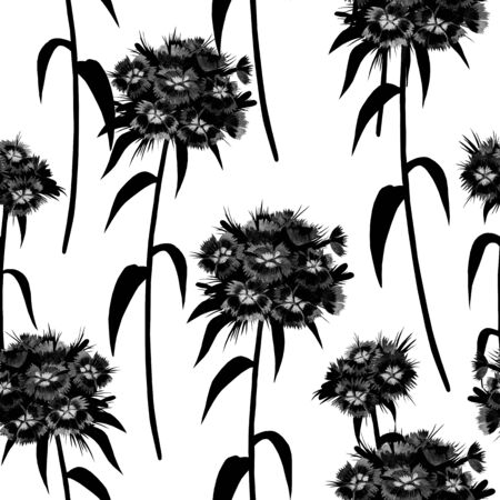 Black and white  seamless pattern with turkish carnation on white background Фото со стока