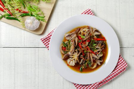 stir-fried Octopus dollfusi and basil.Thai food