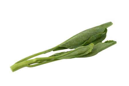 Chinese Kale isolated on white background