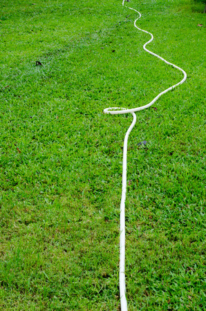 water hose: Water hose in backyard Stock Photo