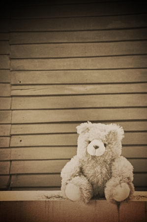 Teddy bear doll on wood background photo