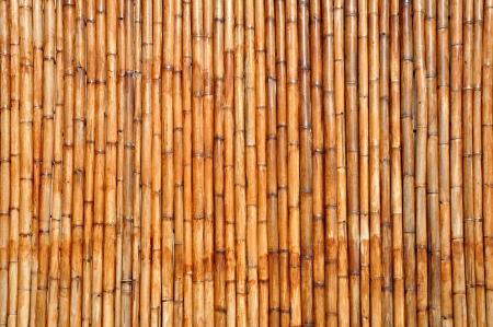 Bamboo background Stock Photo - 16438142