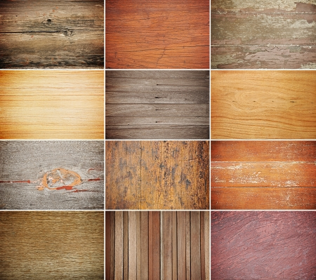 Collection of wood texture backgrounds photo