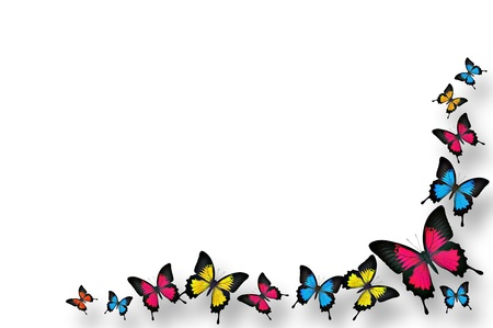 Butterflies border design photo
