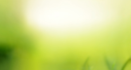 empty space for text: Green natural abstract background with white space for text Stock Photo