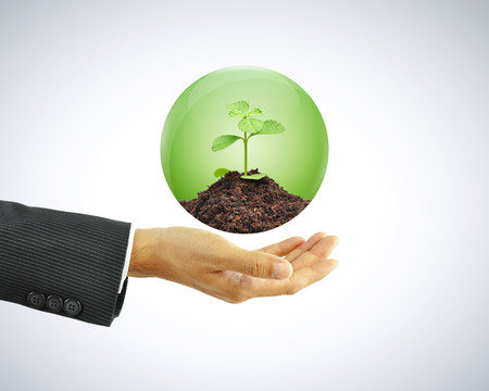 conservationist: Businessman hand holding green sapling with soil in the globe Stock Photo
